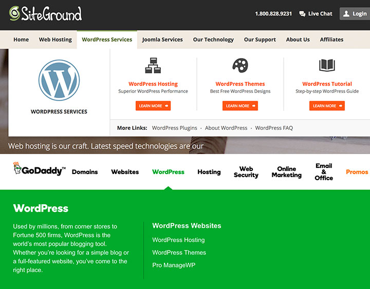 getting started with a WordPress Website host